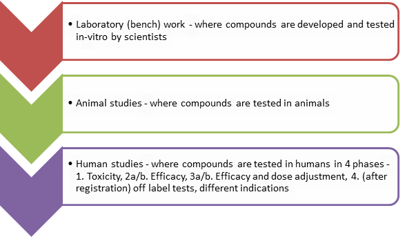 Phases of drug testing 2